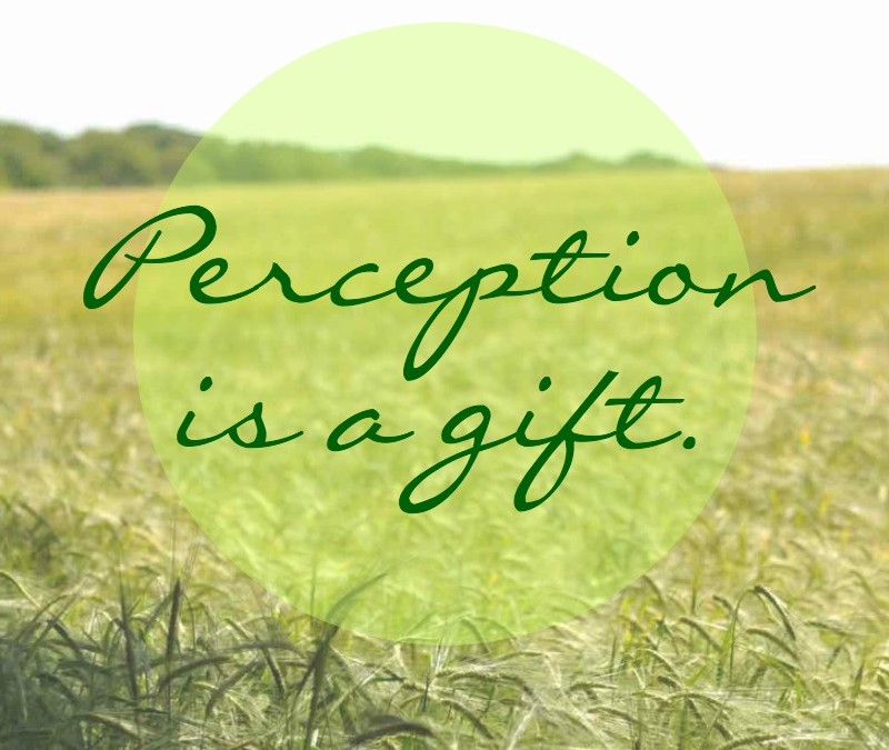Perception is a gift